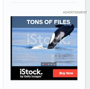 iStock ad with whale