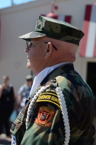 Vietnam veteran at Ypsilanti 4th of July parade, 2014