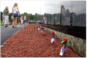 Vietnam wall flowers