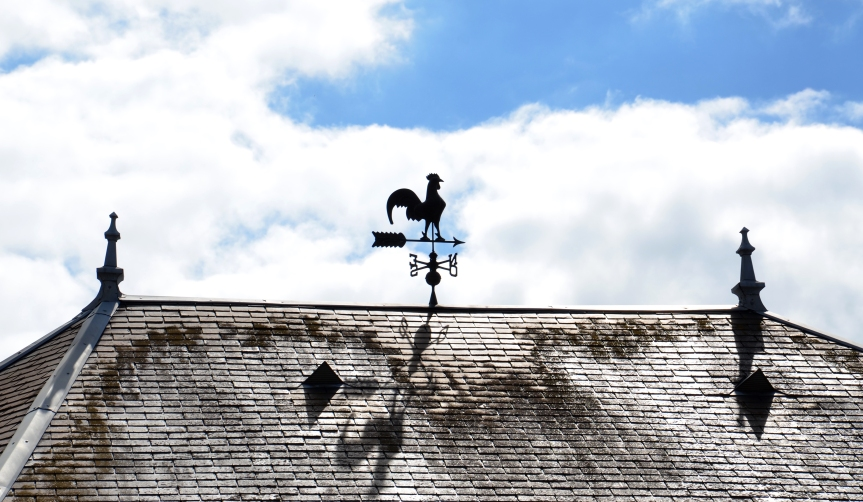 Weathervane in Vernon, France